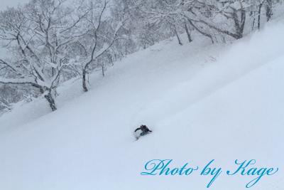 14.02.07_Naoya_K72_7429.jpg