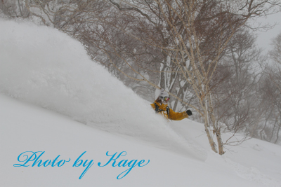 14.02.18_Watanabe_K7D_4578.jpg