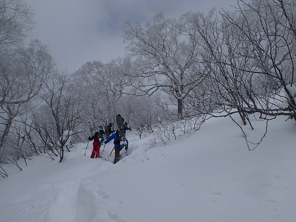 2013.12.28.BCハイク.JPG